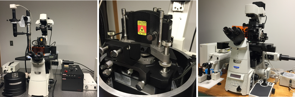 Photo of scanning probe microscope and atomic force microscope